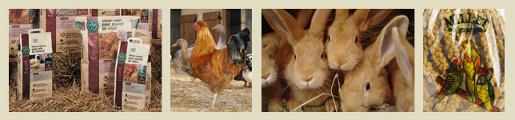 alimentation_animale3