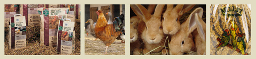 alimentation_animale3